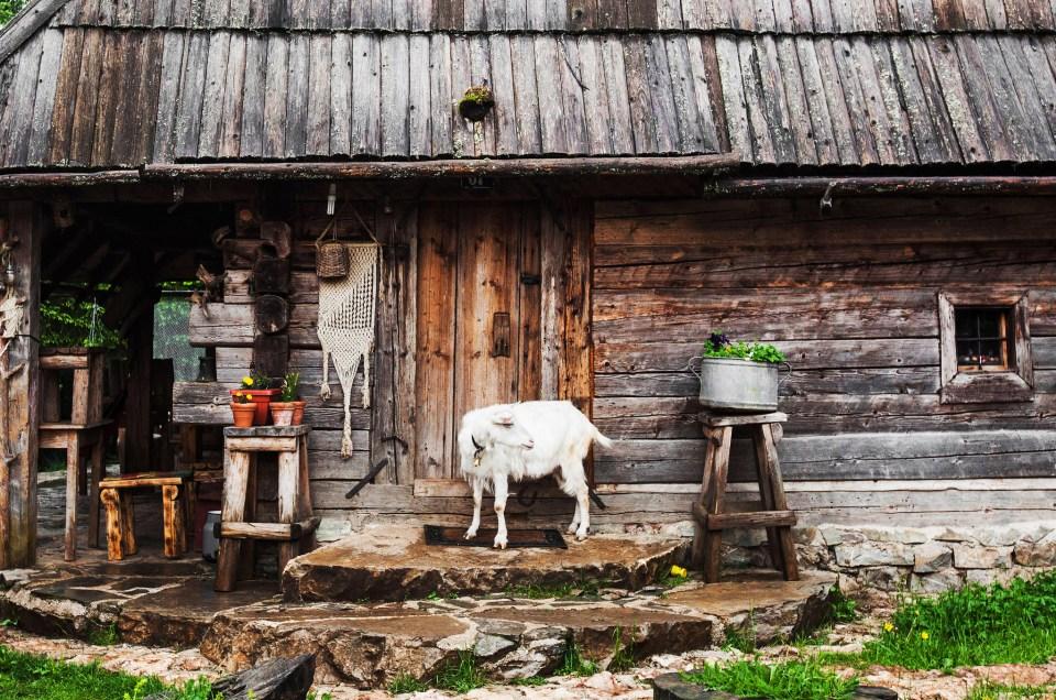Vukov Konak – yö ja päivä bosnialaisessa vuoristokodissa