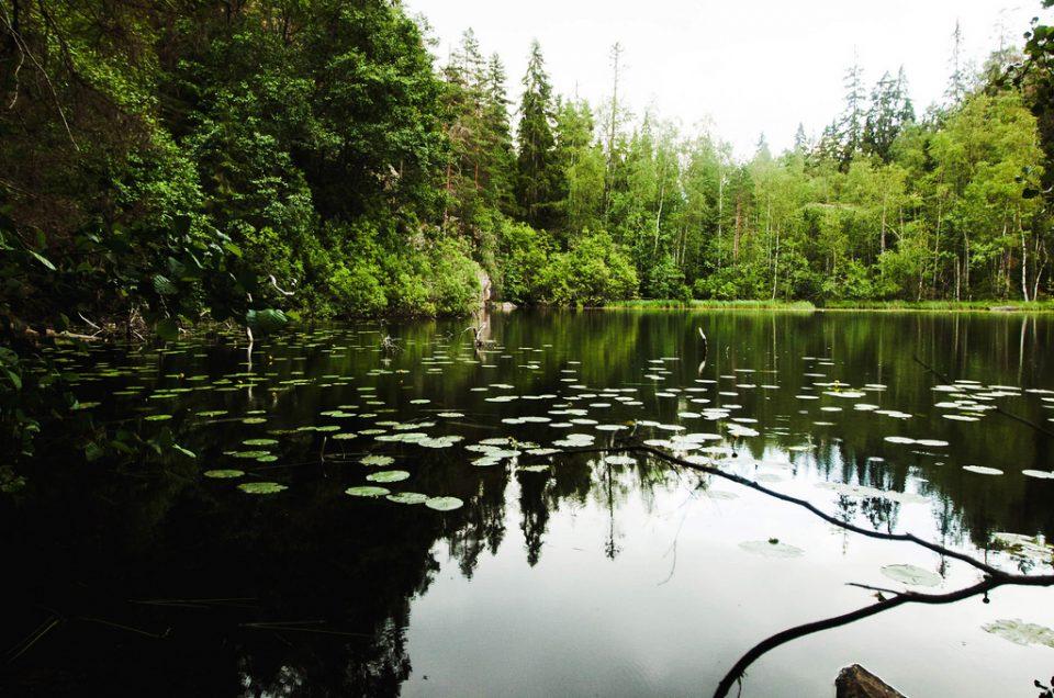 Helvetinjärvi ja hukkaan mennyt hauki