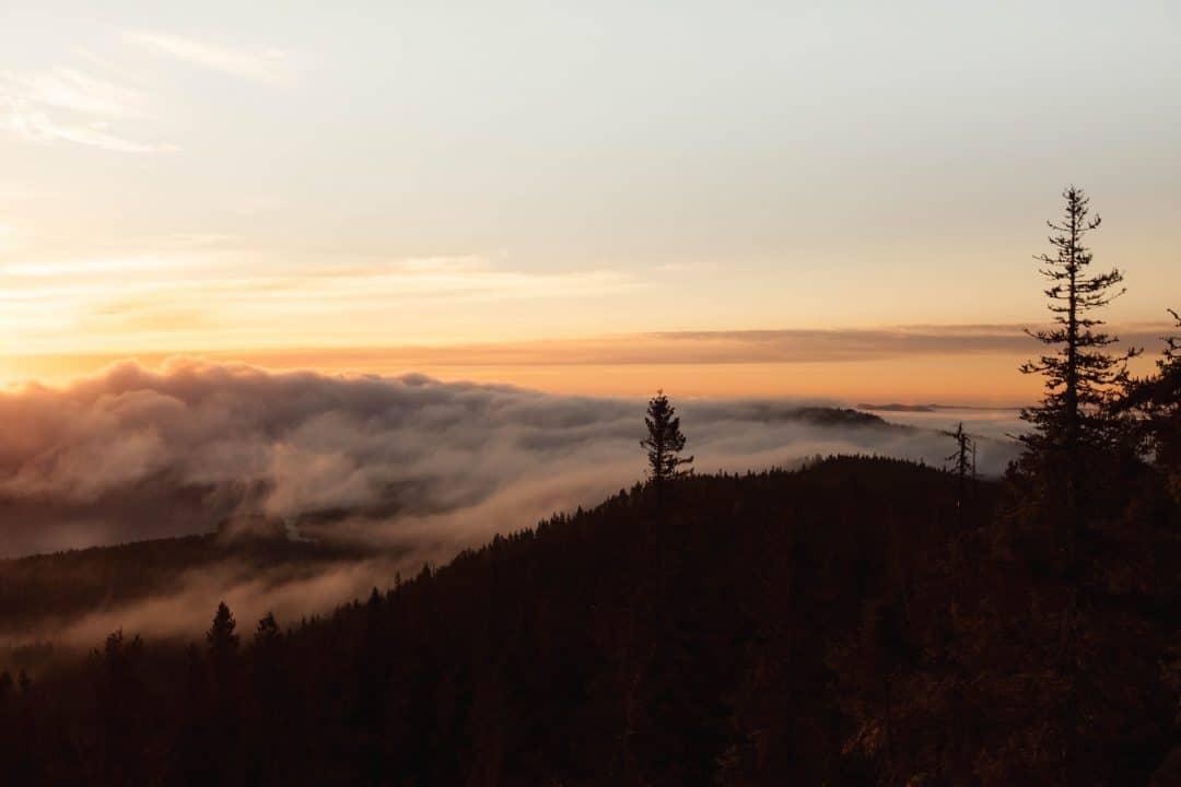 Kolin kansallispuisto - Karelidien komea Mustarinta