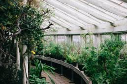Kööpenhaminan kasvitieteellinen puutarha