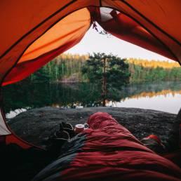 paras teltta