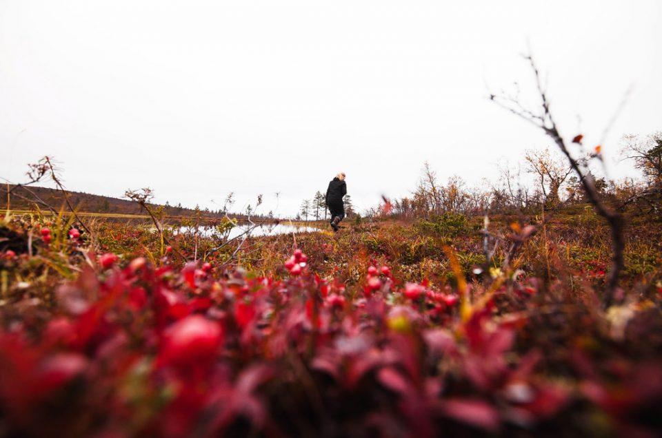 Suomi – Eino Leinon päivän kulkijat
