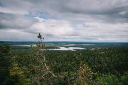 Valtavaara Kuusamo Oulangan kansallispuisto