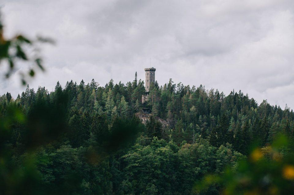 Aulangonjärven kierros / Sibeliuksen metsä