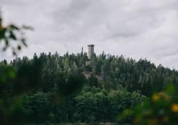 Kotimaan matkailu Aulangonjärven kierros / Sibeliuksen metsä - Luontopolut