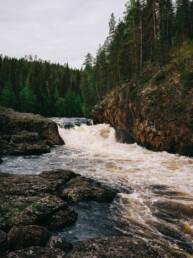 Kiutaköngäs Oulangan kansallispuisto