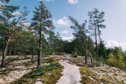 Westerholmin luontopolku Nauvo