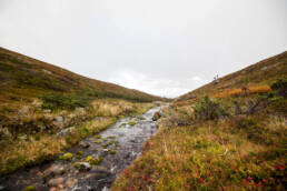 Taivaskeron kierros Pallas-Yllästunturin kansallispuisto