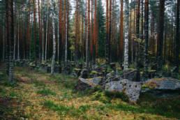 Tuntemattoman sotilaan polku Virolahti