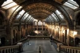 Luonnontieteellinen museo Lontoo