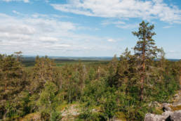 Sattasvaara