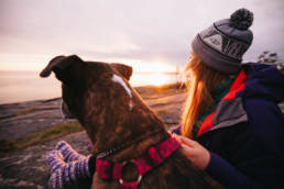 vaellus ja retkeily koiran kanssa
