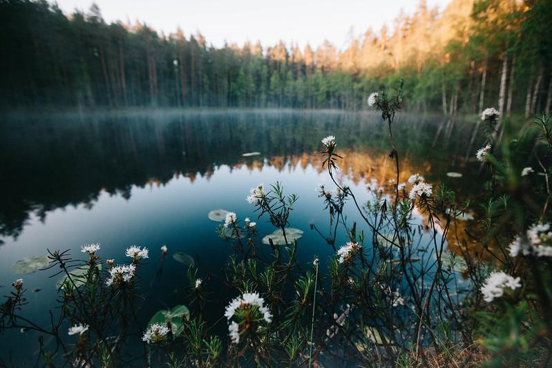 Suomen kansallispuistot, Nuuksio